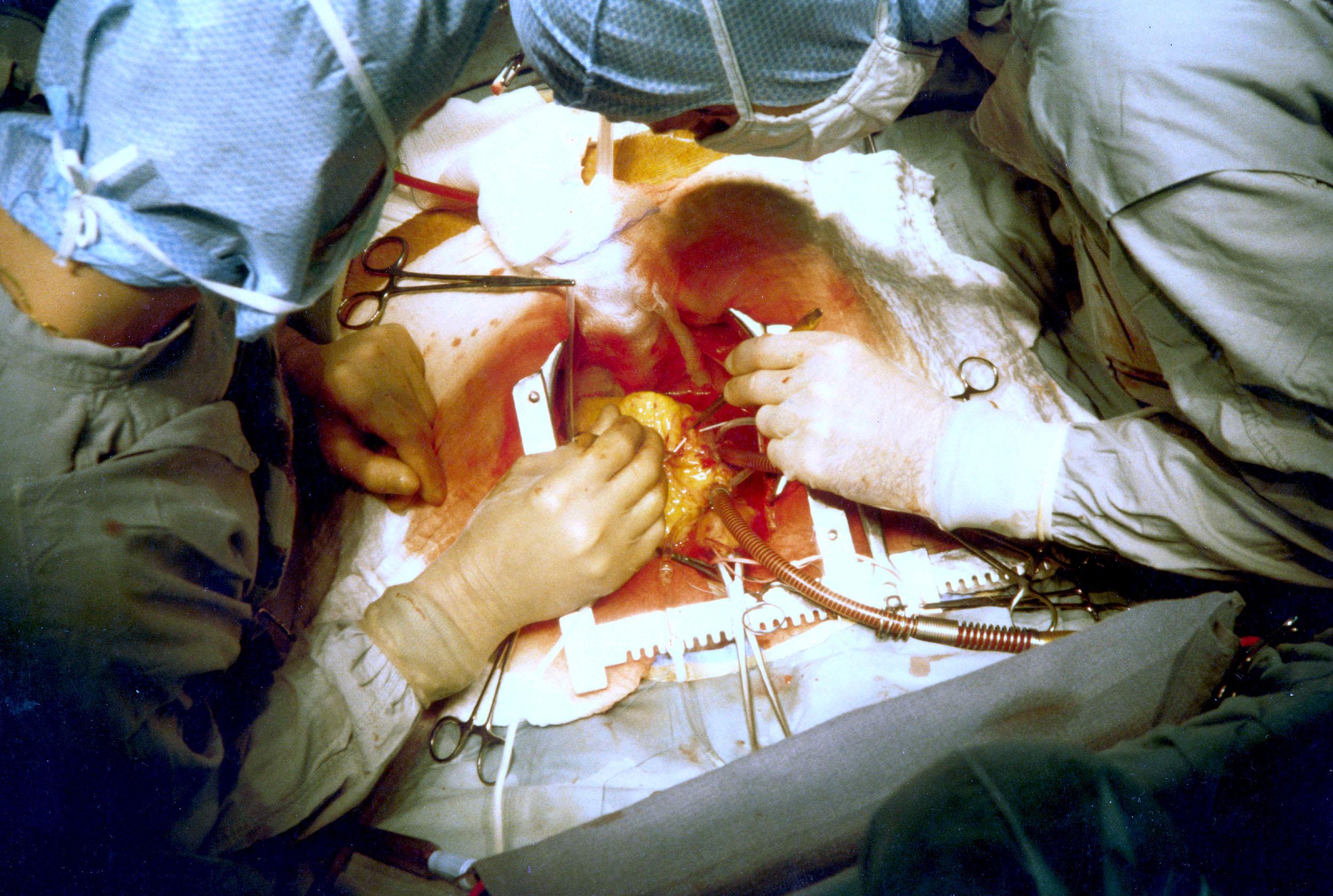 https://www.paramounthospital.in/best-pulmonology-hospital-in-siliguri/